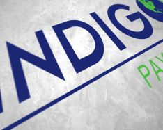 Indigo Payments Logo Design